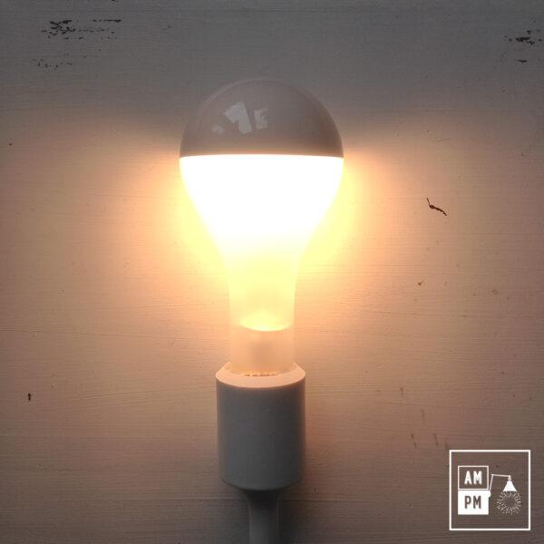 ampoule-reguliere-givre-argente-PS25-150W-1