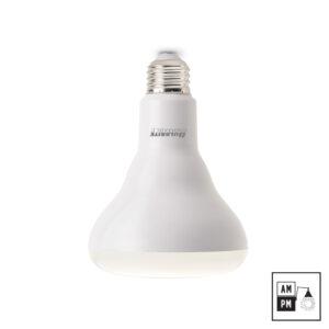 Ampoule-DEL-type-reflecteur-BR30